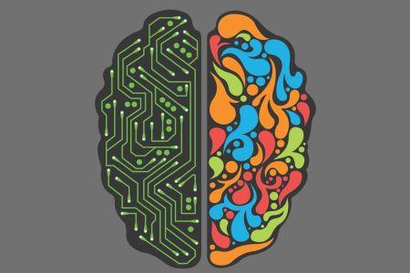 ¿Por qué está dividido nuestro cerebro?